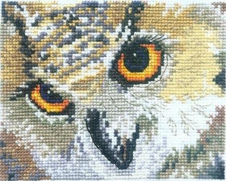 Ольга:Взгляд совы